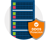 SSD Web Hosting With Free DDoS Protection